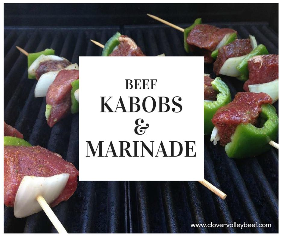 Beef Kabobs & Marinade - Clover Valley Beef